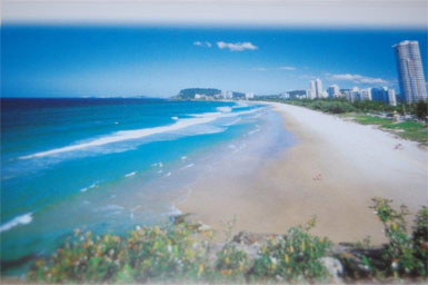 This is the beach on the Gold Coast where Bev encountered a 